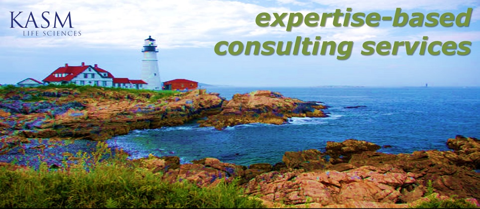 KASM expertise-based consulting services